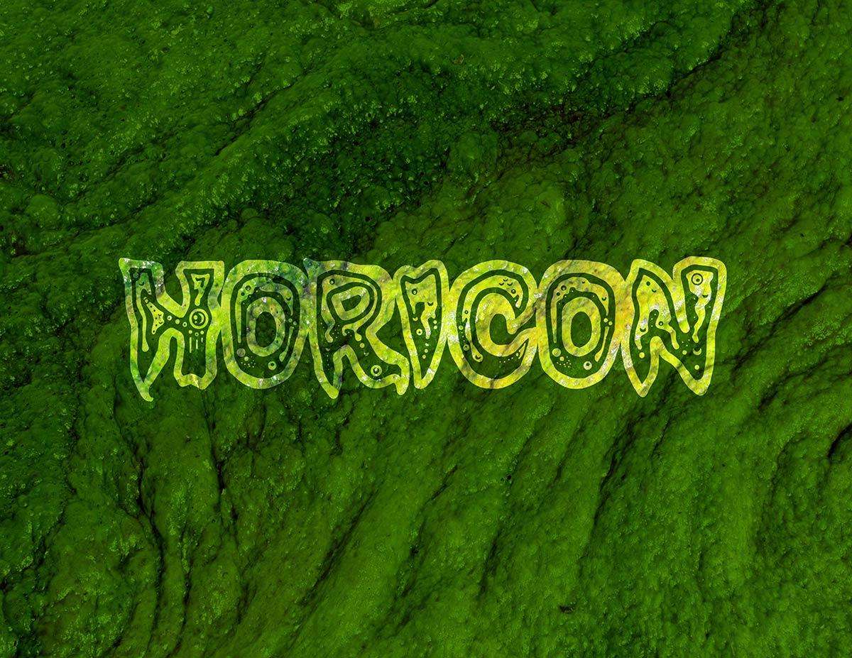 Horicon